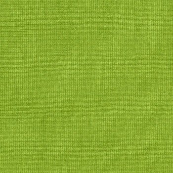 PAMUK Jersey Apfelgrün