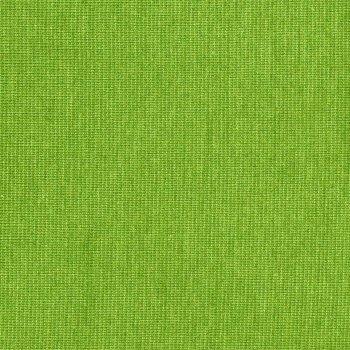 PAMUK Jersey Grün