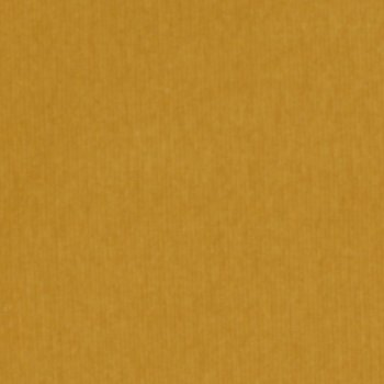 50 cm PAMUK Bündchen Senf