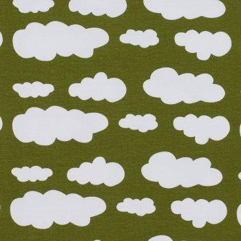 CLOUDY Olive
