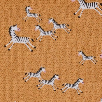 Safari: Mini Zebras