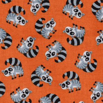 Mini Critters: Racoons