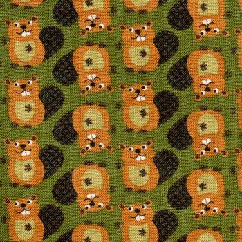 Mini Critters: Beavers