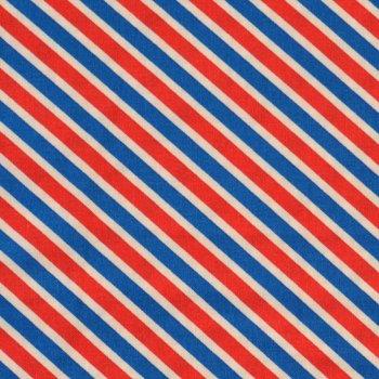 US MAIL Stripes