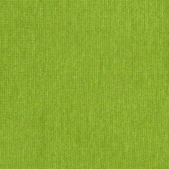 PAMUK Sommer Sweat Apfelgrün