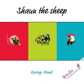 Reste - Shaun - Racing PANEL